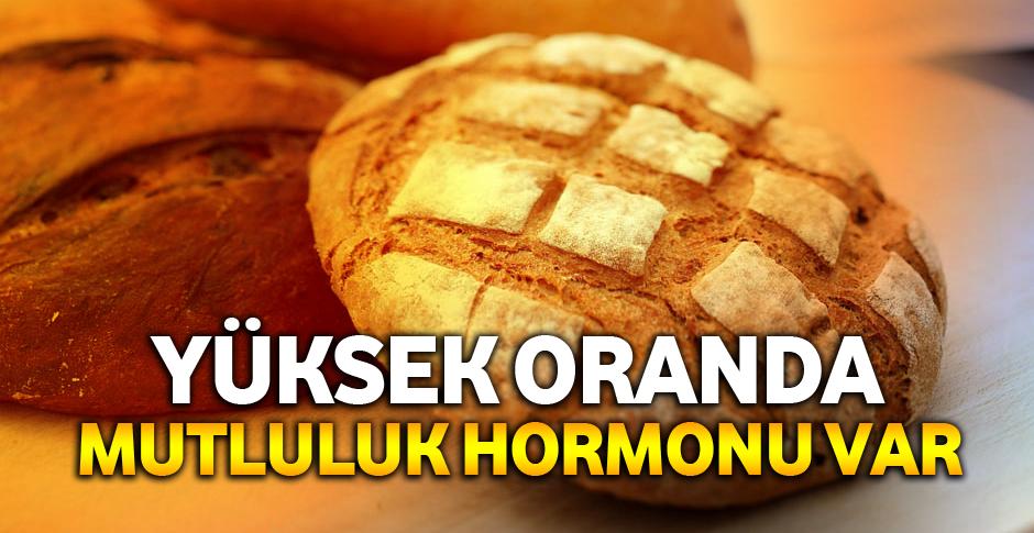Ekmek Keyif Verici Maddeler İçeriyor