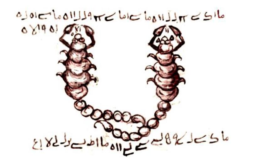 Şehveti-Kalp Heyecanlamasını- Sevdayı Teskin eden TILSIMI ZUHAL